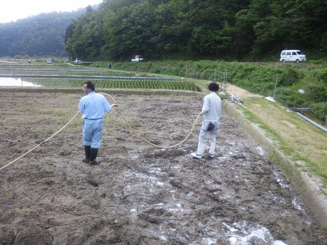 散布機で土壌に前処理剤水溶液を散布します